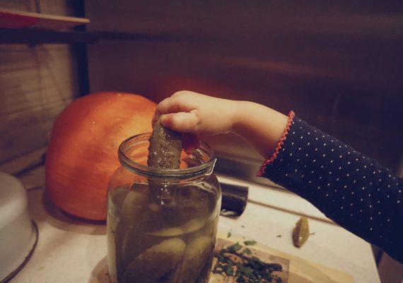 Солёные огурцы и Элишка