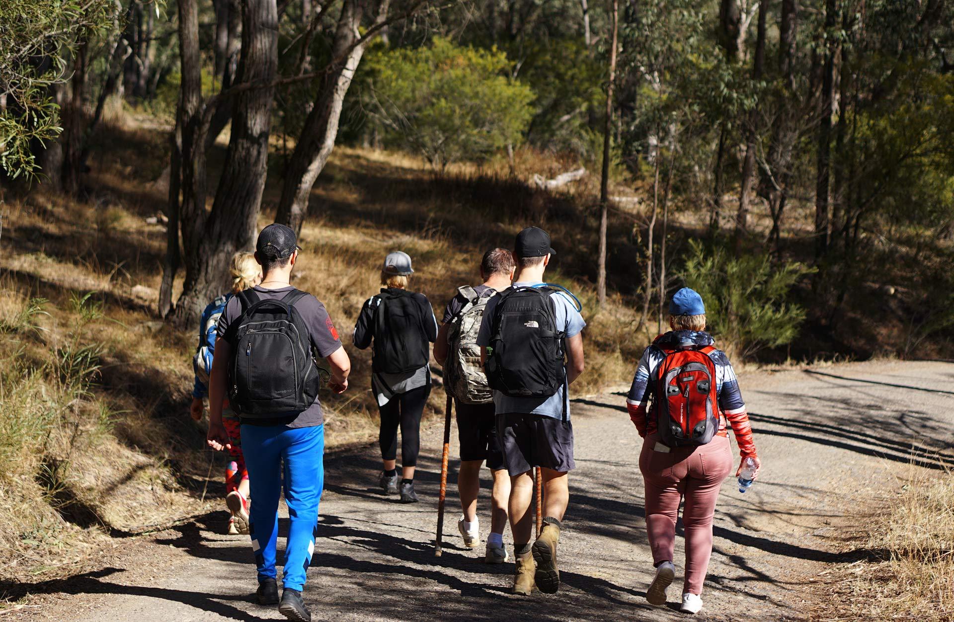 Австралия. Blue Mountains. Six Foot Track